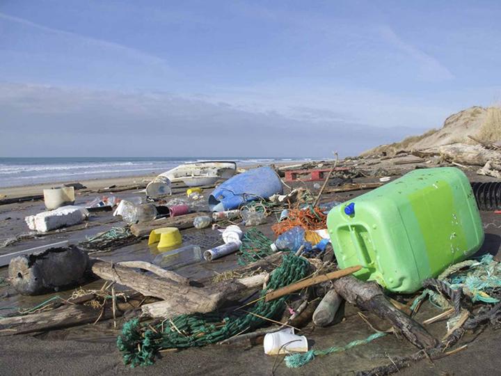 Le plastique toxique présent dans la chaine alimentaire humaine